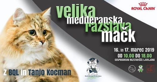 Velika mediteranska razstava mak Ljubljana 2019