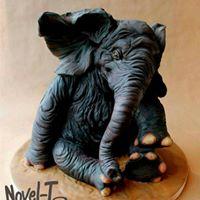 Carved Elephant Cake Class
