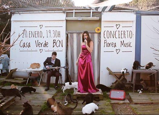 Florea Concierto acstico en Barcelona