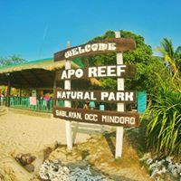 APO REEF  Pandan Island July 26-27 AdvenTour