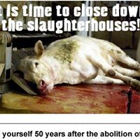 World Day for the Abolition of Meat
