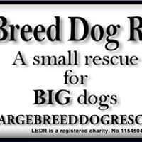 Leybourne Dog Rescue