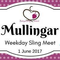 BWI Mullingar June Weekday Sling Meet and Library