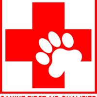 Canine First Aid with RVN Rachel Bean