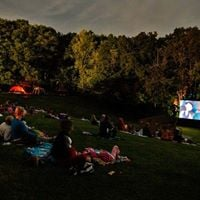 Films in the Forest - Cambridge
