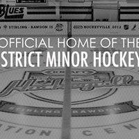 Stirling Blues Ball Hockey Registration