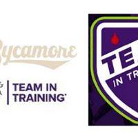 Charlotte Area - Team In Training Fun RunWalk &amp Social