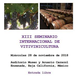 XIII Seminario Internacional de Vitivinicultura
