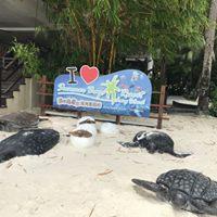 Christmas - 5D4N Summer Bay Resort - Scuba Diving Adventure