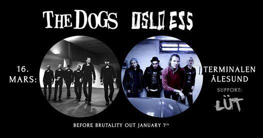 The Dogs Oslo Ess LT  Terminalen