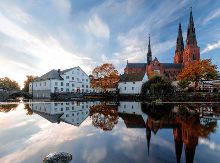 par tik mager i Uppsala