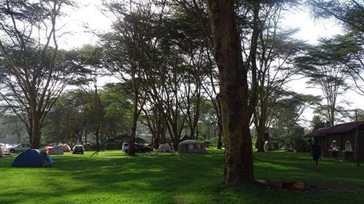 2 Day Camping at L. Oloiden Campsite( 20Kms off L. Naivasha)