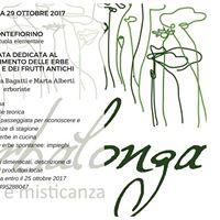 Giornata dedicata al riconoscimento delle erbe spontanee