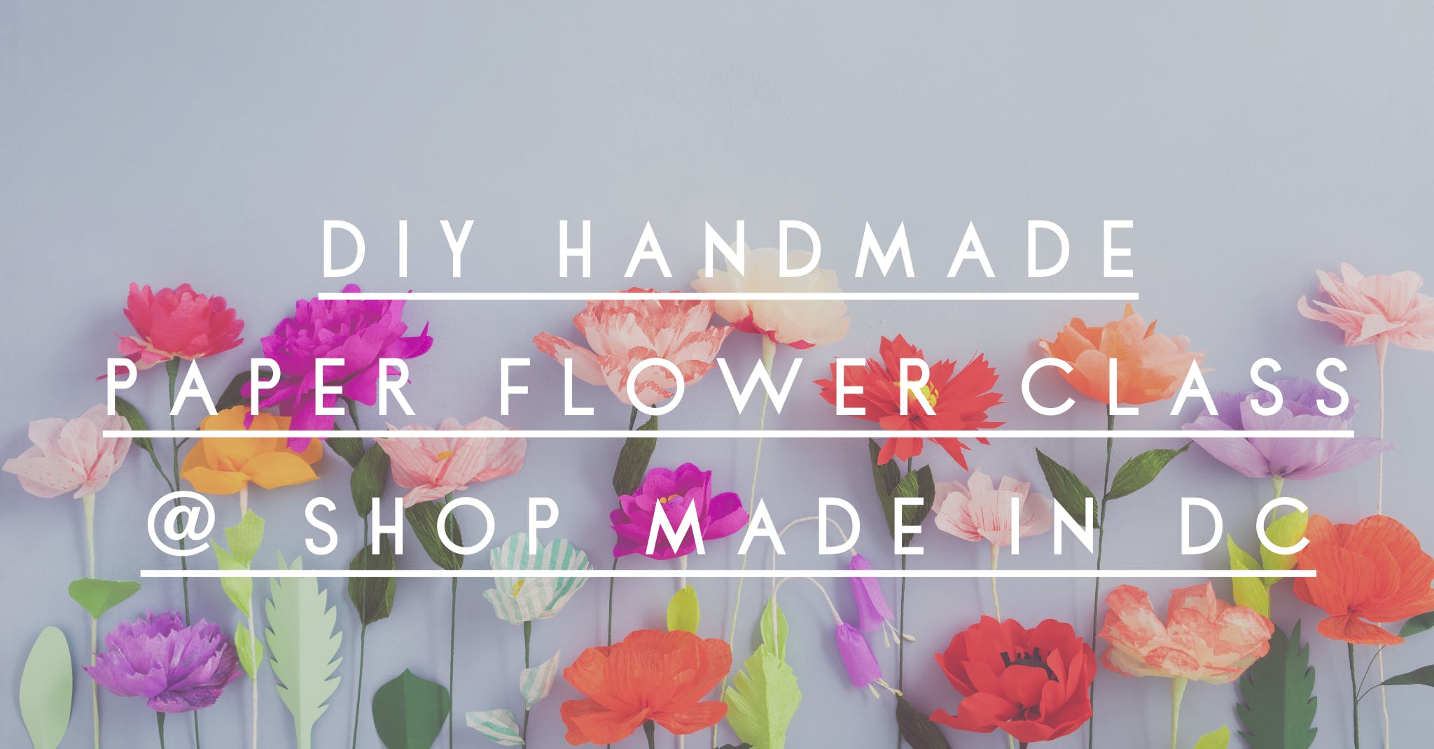 Diy Paper Flower Making With Alison Kirby At Shop Made In Dc Washington