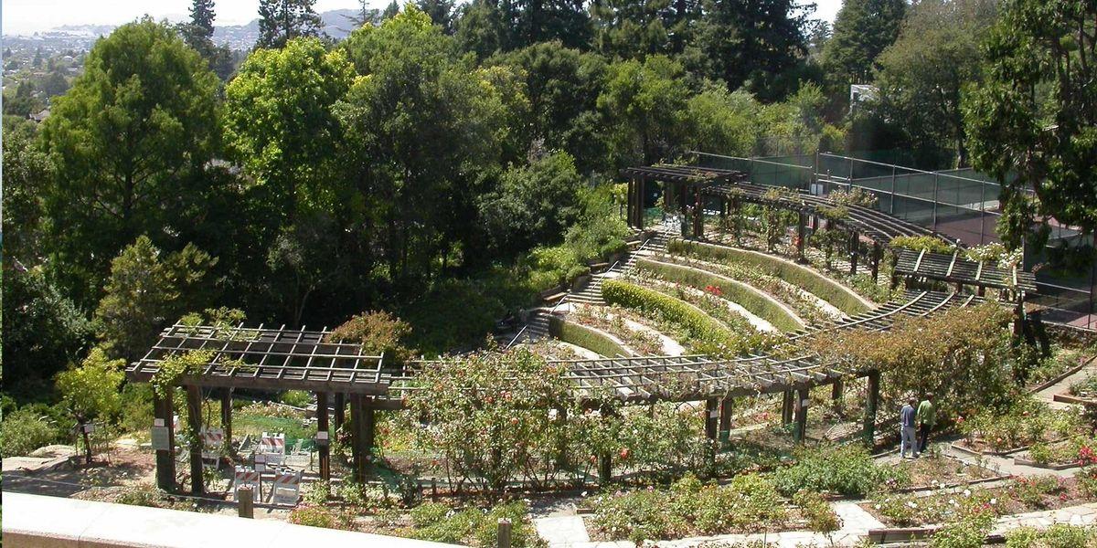 Berkeley Waterfalls and Walkways