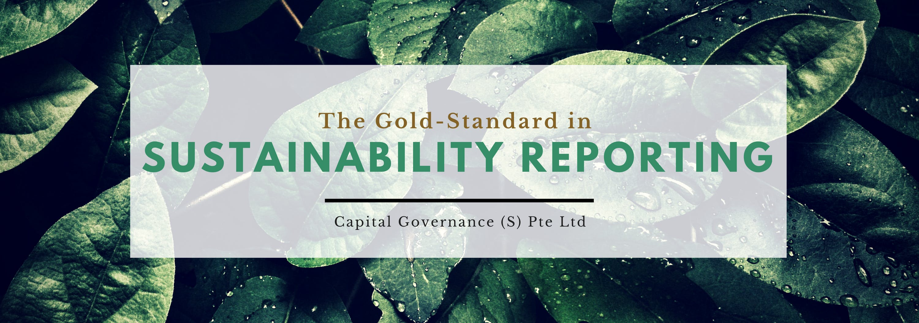 2018 GRI Sustainability Reporting Course