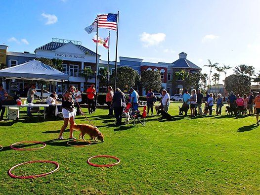 2019 Paws in the Park at Tradition Square, Port Saint Lucie