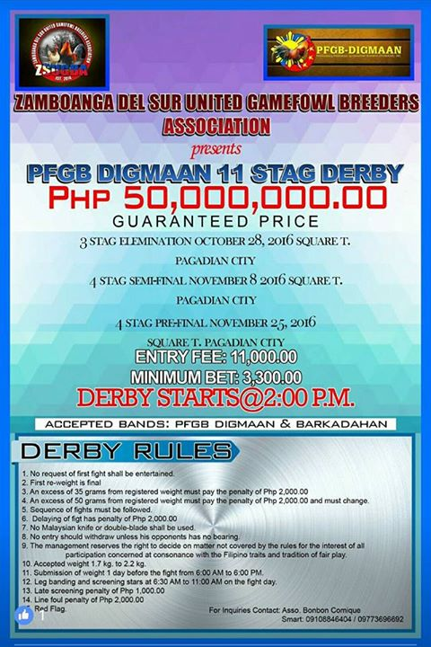 ZSUGBA / DIGMAAN11 Stag Derby50,000,000 00Guaranted Price at Square