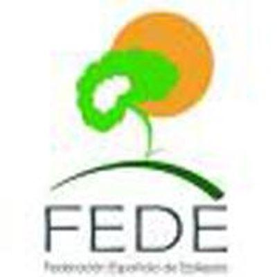 FEDE Federación Española de Epilepsia