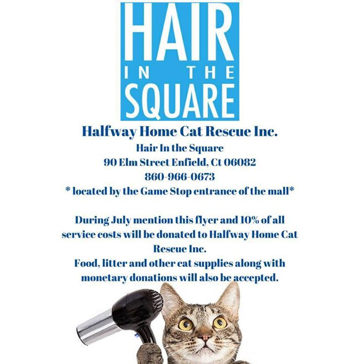 Halfway Home Cat Rescue Inc