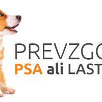Za vse ljubitelje psov - prvi slovenski kongres