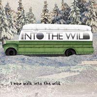 Cineforum - Into the wild