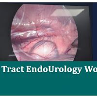 Upper &amp Lower Urinary Tract EndoUrology Workshop