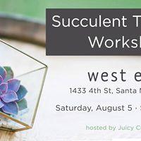 Succulent Workshop at West Elm Santa Monica