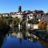 Weindegustation Fribourg