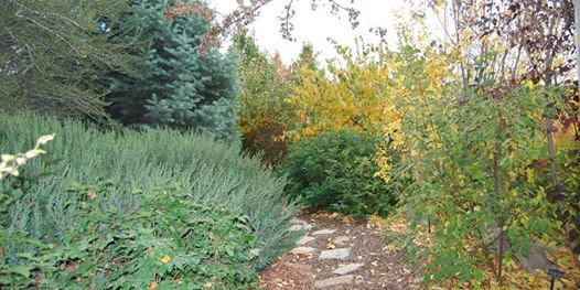 Turning Over Your Garden: Fall Yard and Garden Care at Conservation ...