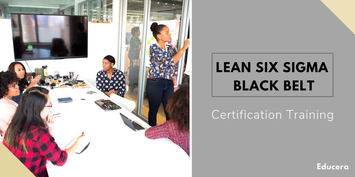 Lean Six Sigma Black Belt (LSSBB) Certification Training in Duluth MN