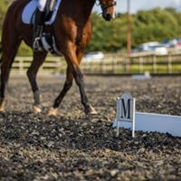 Affiliated &amp Unaffiliated Dressage at Priory Equestrian