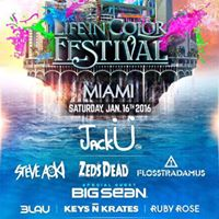 Life In Color Miami  January 16 2016