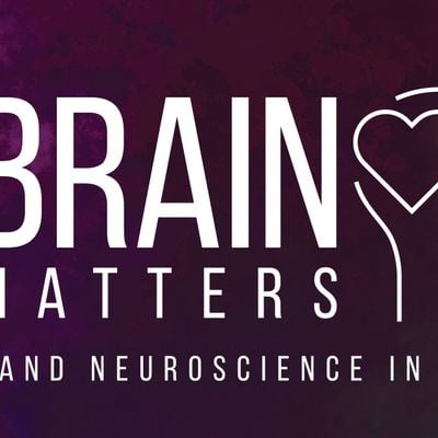 Brain Matters Faith and Neuroscience in Dialogue