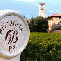Visita cantina Bellavista e pranzo sul Lago di Iseo