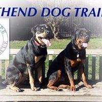 Last Hope Animal Rescue Charity Pack Walk