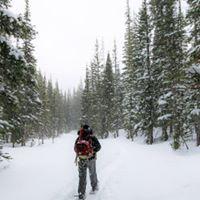 Winter Snowshoe Hike SeriesAlbert Family Community Forest