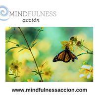 Taller Gratut - Mindfulness per a la Reducci de lEstrs