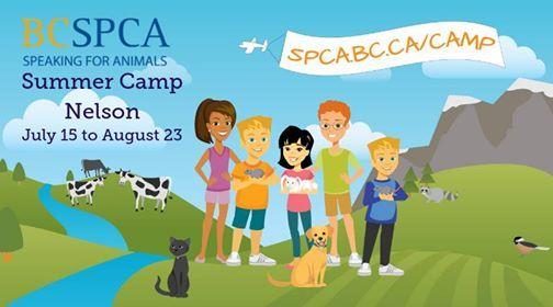 BC SPCA Summer Camp