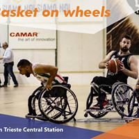 Basket on wheels with ESN Trieste