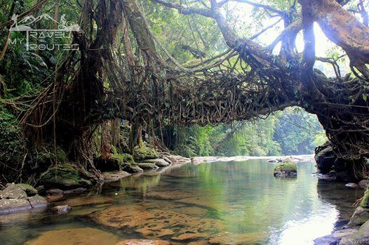 Road Trip to Meghalaya - The Abode of clouds