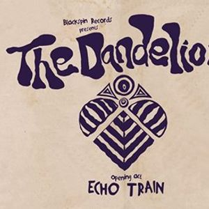 The Dandelion Live wOpening Act Echo Train at six dogs