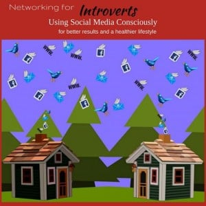 Conscious Social Media Networking for Introverts