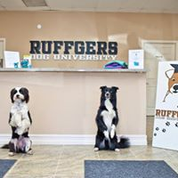 YAPPY HOUR with Ruffgers Dog University and Residence Hall
