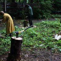 Workshop I was told I chop wood like a ballet dancer