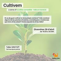 Taller &quotCultivem&quot - Increible comestible Valls