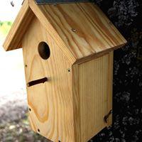 Taller de cajas nido