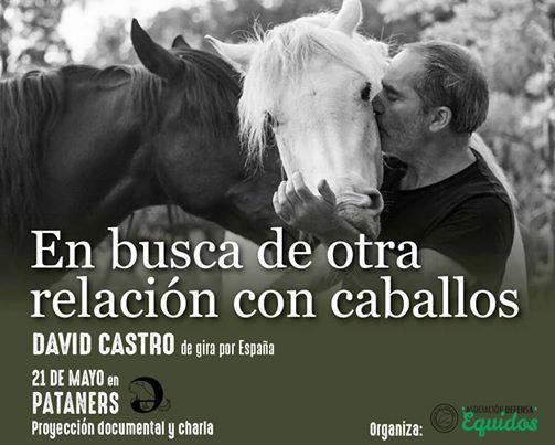 En busca de otra relacin con los caballos