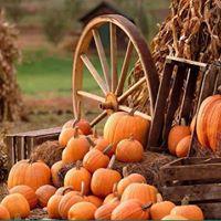Fourth Annual Country Pumpkin Festival