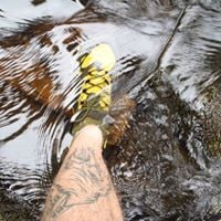 Gaea Norvegica Trail 2018